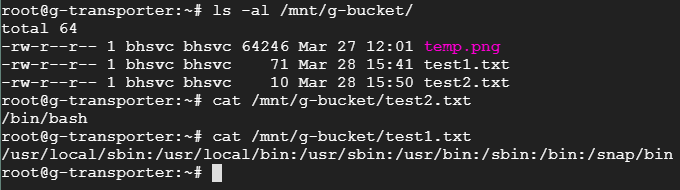 Checking files created in the mounted Google bucket