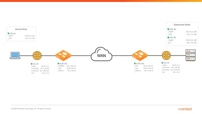 SSL Optimization Topology